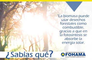 biomasaok1